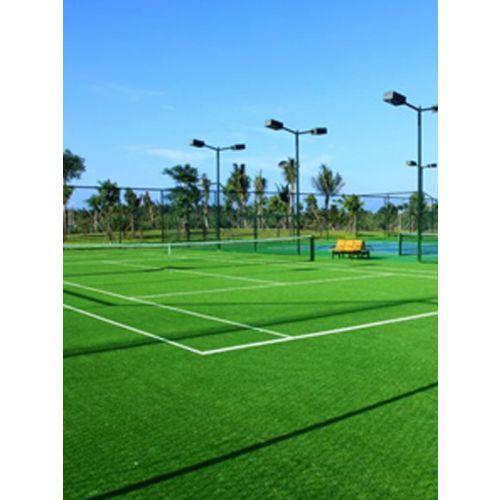 Natural grass court / Sft